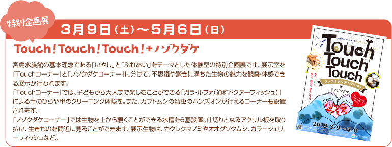 Touch!Touch!Touch!+ノゾクダケ